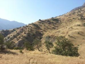 Mount Sanat 3