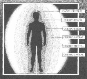 Cuerpo Multidimencional