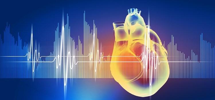 Mente y Corazón Fabrican Emociones
