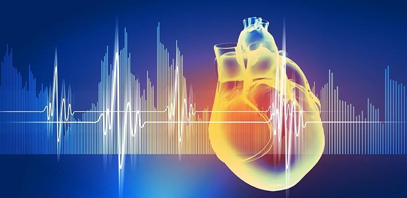 ¿La Mente y el Corazón Fabrican Emociones?