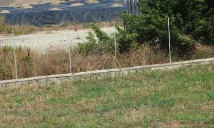 Serra Pastore, ultimata la gara per la bonifica della discarica