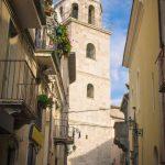 Erasmo Fortunato subcenturione, caduto per la Religione, il Re e la Patria a San Bartolomeo in Galdo