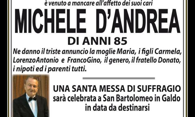 Michele D'Andrea