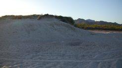 Side of Dune