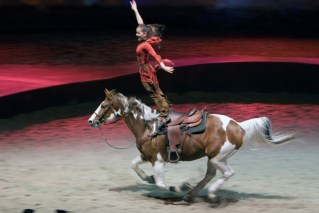 An Acrobatic equestrian act in Cavalia.