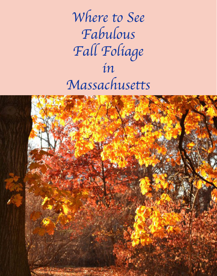 #Massachusetts bursts with red and gold in autumn.