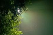 మానస సంచరరే-39: 'మృత్యోర్మా అమృతంగమయ'!