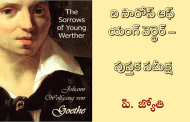 ది సారోస్ ఆఫ్ యంగ్ వెర్థెర్ - పుస్తక సమీక్ష