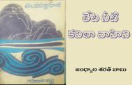 అంతర్వాహిని - పుస్తక విశ్లేషణ