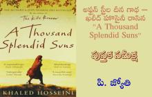 """అఫ్ఘన్ స్త్రీల దీన గాథ – ఖలీద్ హొసైనీ రాసిన """"A Thousand Splendid Suns"""""""