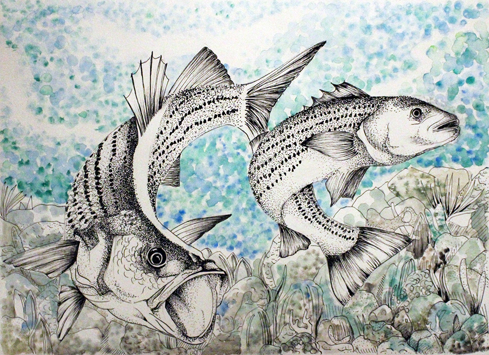 Seariously impressive Marine art contest leads the way