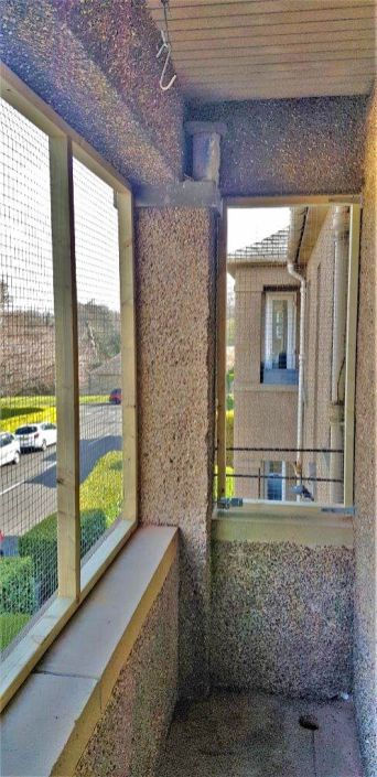 Balcony screen for cats - Scotland