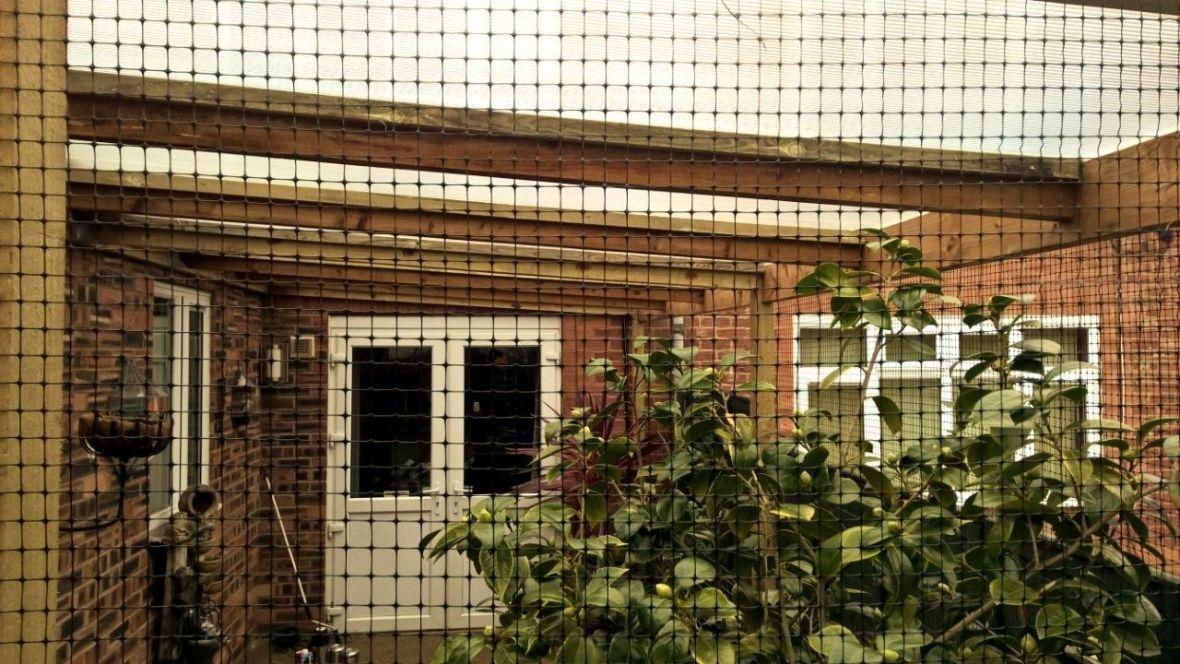 Catio enclosure with plastic roof