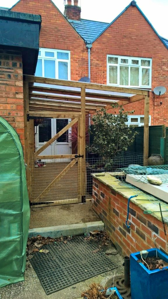 Catio enclosure with plastic roof