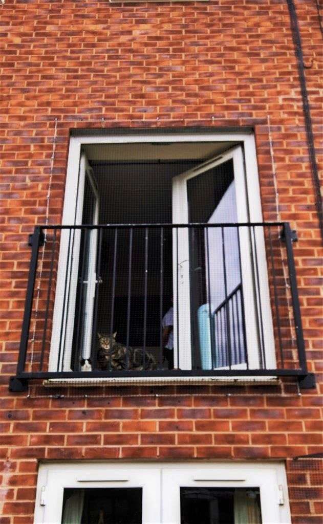 Cat screen for juliet balcony