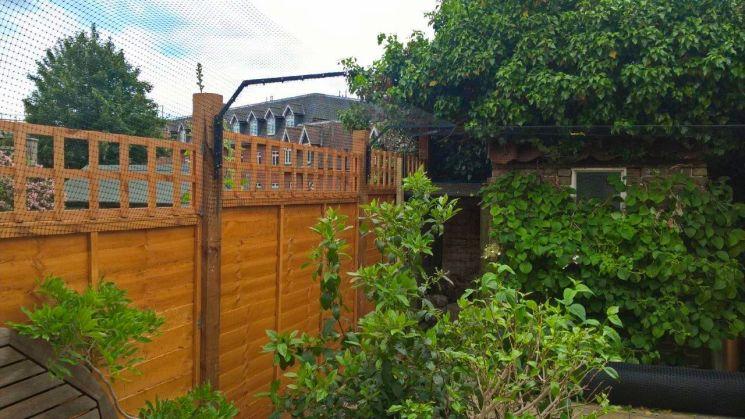 small cat proof garden in Surrey