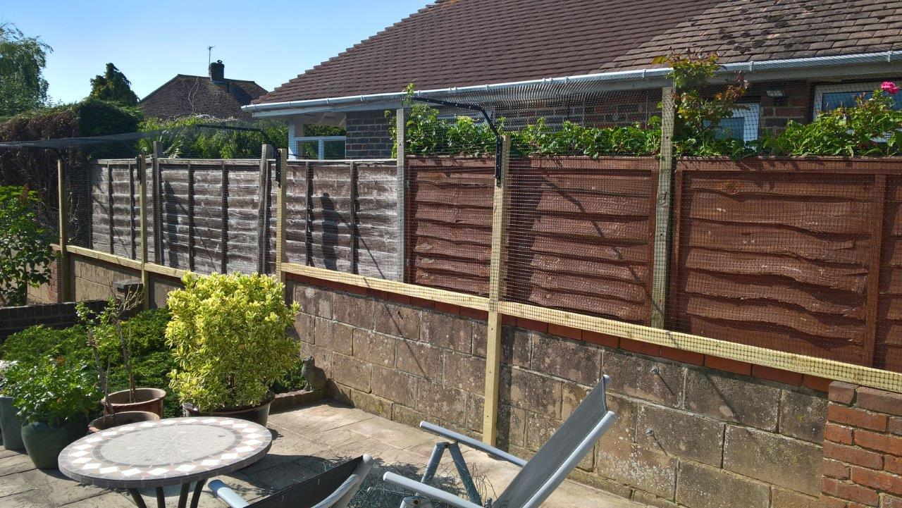 Cat proof fencing to extend low wall