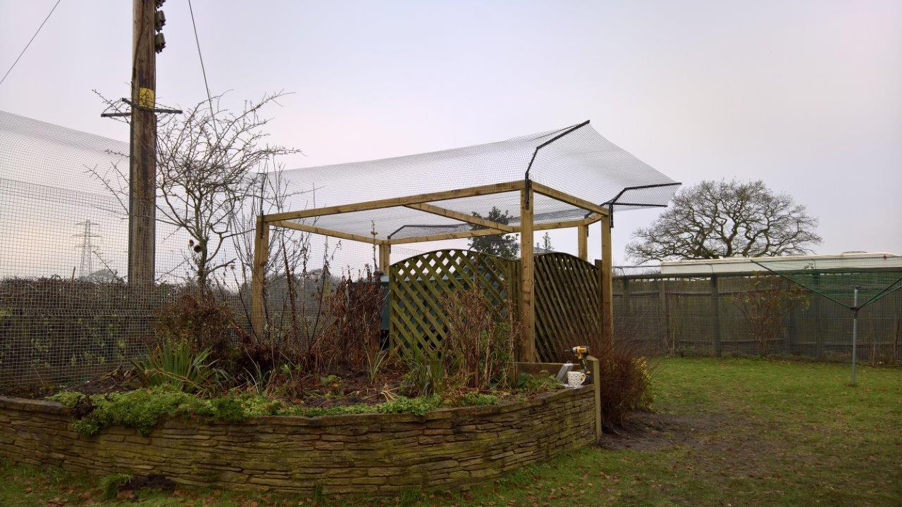 Cat proof garden