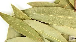 Bay Leaves-250gms(Laurus Nobilis)