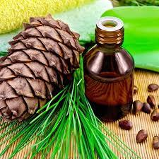 Cedarwood Essential Oil-10mls-Cedrus Atlantica. Origin: Morocco