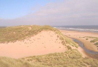Sand Dunes in Balmedie Beach, near Aberdeen