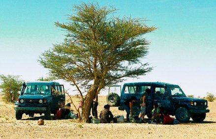 Tea Time in the Desert