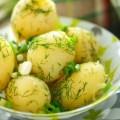 Молодой картофель польза для организма человека