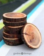 branch-coasters-2