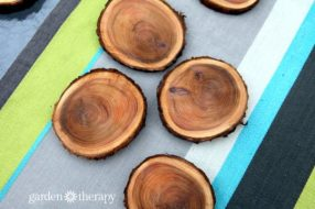 branch-coasters-3
