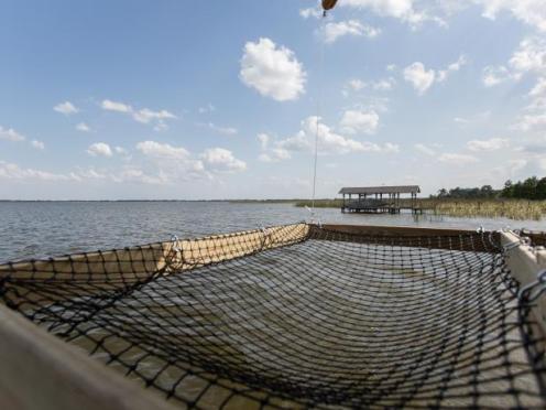 dock-hammock-2