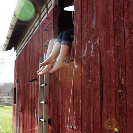 Reading in the barn