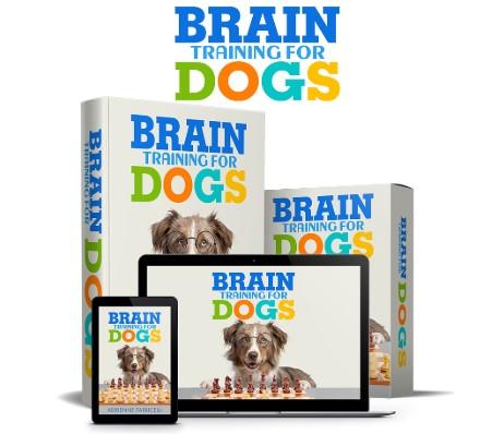 brain traininig for dogs reviews