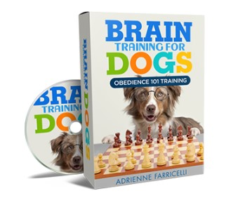 brain training for dogs reviews