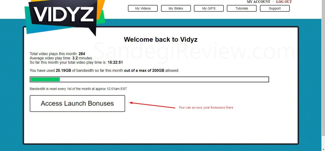 vidyz review