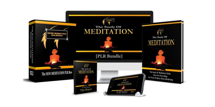 the study of meditation plr