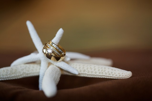 The Catamaran Wedding Photos 20140810_0091