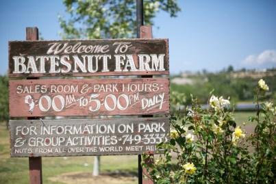 Bates Nut Farm Wedding Photos 18