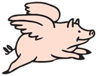 Flying Pig Cartoon