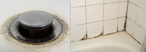 Beware Having Mold On Your Bathroom Can Be Dangerous San Diego Bath Wraps