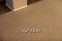 Carpet Dyeing San Diego | San Diego Carpet Repair and ...