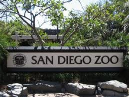 San Diego Zoo Marquee