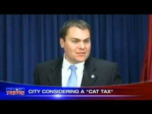 sdfp demaio cat tax