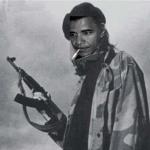 Obama-guns