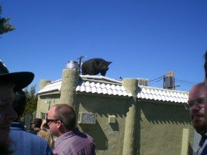 Look for metal pig on the roof...