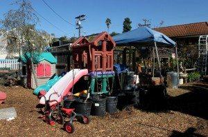 City Farmers Nursery kidstuff
