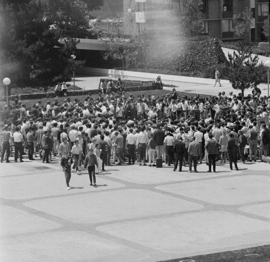 UCSDquadprotestlarge