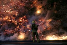 EWW Wildfires