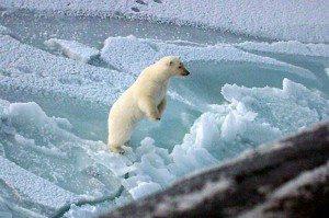 globalwarming6