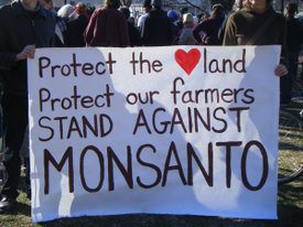 US Farmers Continue David Vs Goliath Battle Against Monsanto