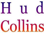 SDFP Collins  Logo